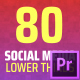 Social Media Network Pack - VideoHive Item for Sale