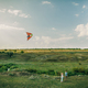 couple play with air kite at green meadow - PhotoDune Item for Sale