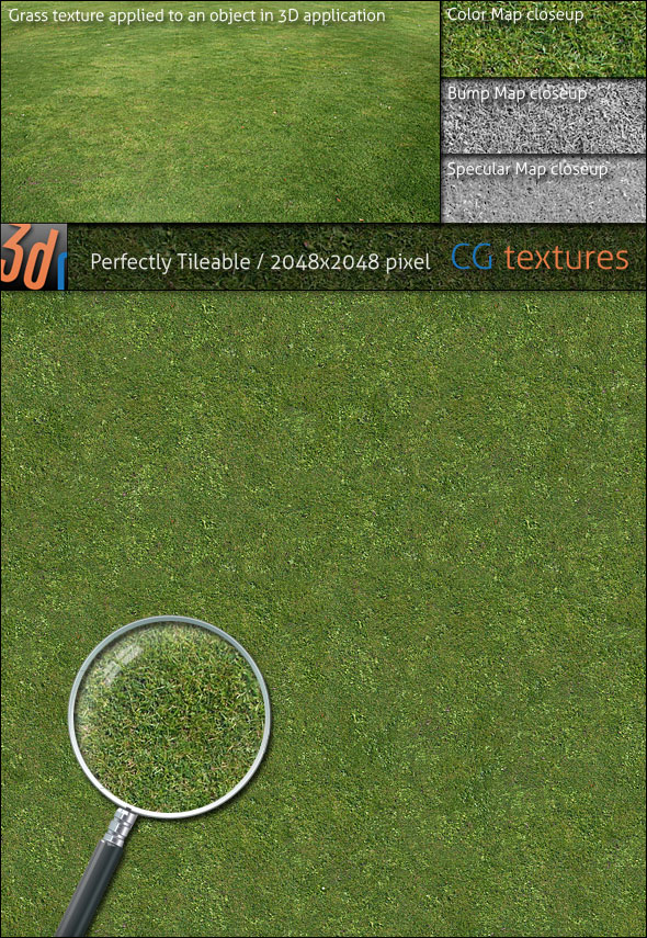 Grass Lawn Hi-Res Texture 01 - 3DOcean Item for Sale