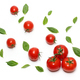 Truss Tomatoes and Basil Leaves - PhotoDune Item for Sale