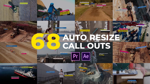 Auto Resizing Call-Outs l MOGRT for Premiere Pro