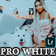 PRO White and Bright  Presets  Mobile and Desktop Lightroom