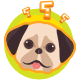 Dogs Quiz | Html5 Game | Educational Games