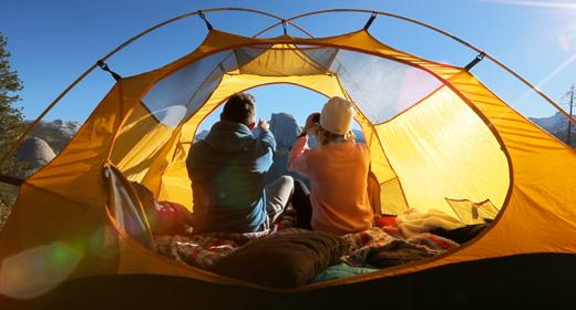 Camping, road trip, wildlife