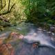 River Flows Between Colorful Limestone Rocks - PhotoDune Item for Sale