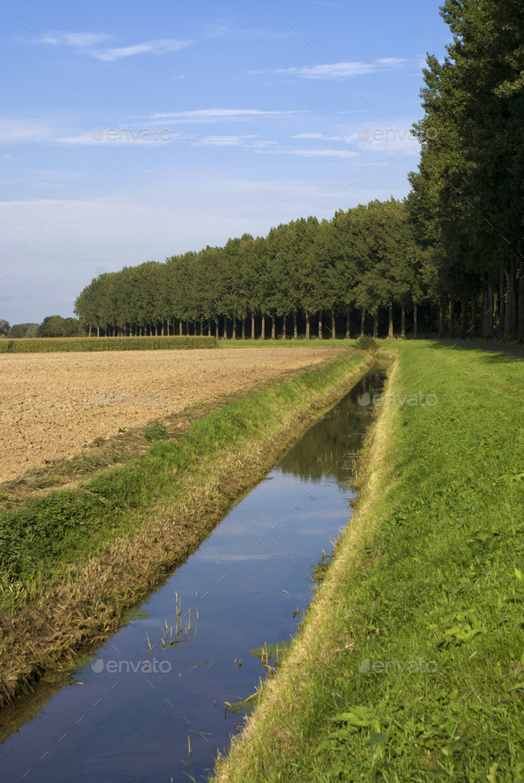 Landscape near Nieuwendijk - Stock Photo - Images