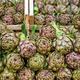 Fresh artichokes for sale - PhotoDune Item for Sale