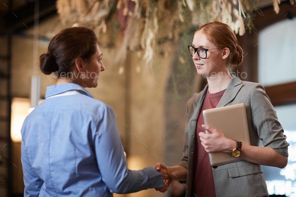 Business handshake before meeting - Stock Photo - Images