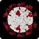 COVID - 19 Novel Coronavirus in Transparent Background - HD - VideoHive Item for Sale