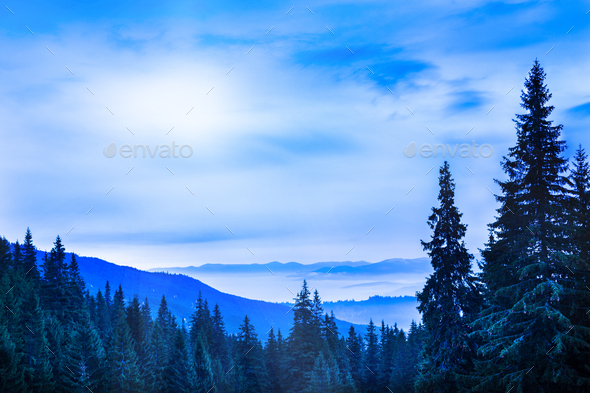 Beautiful scenic landscape of winter mountain forest - Stock Photo - Images