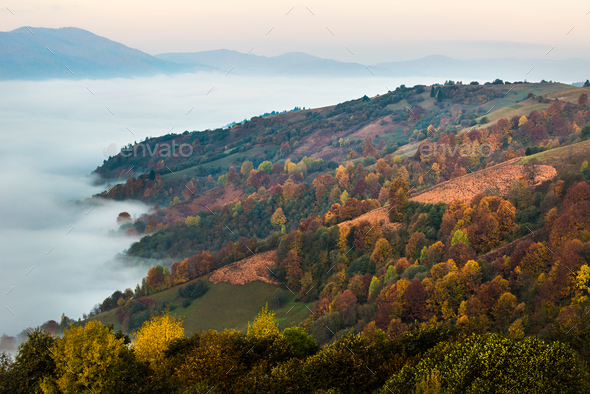 Beautiful morning landscape with autumn foggy mountains - Stock Photo - Images