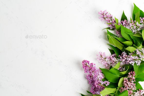 Greeting frame from fresh lilac flowers with green leaves on a light grey marble background. Top - Stock Photo - Images