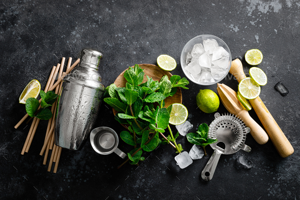 Mojito ingredients and bar utensils - Stock Photo - Images