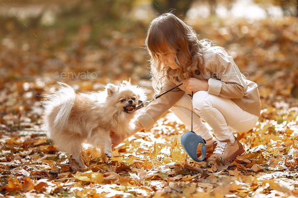 Cute little girl walks in a autumn park with a dog - Stock Photo - Images