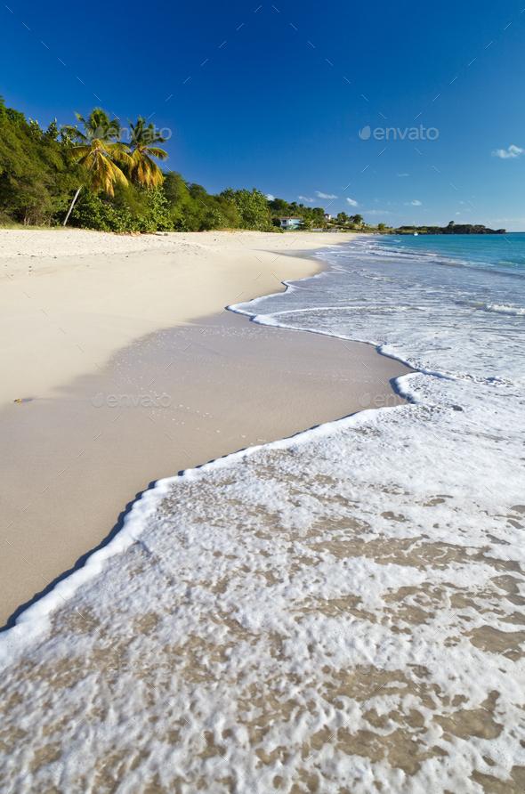 Perfect Caribbean Beach, Antigua - Stock Photo - Images