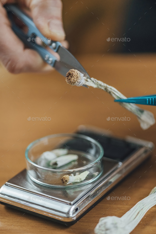 Micro Dosing Alternative Therapy. - Stock Photo - Images