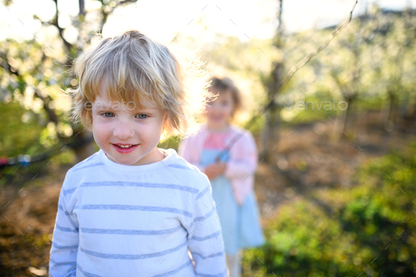 Happy two small children standing outdoors in orchard in spring - Stock Photo - Images