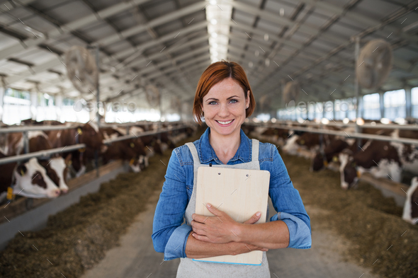 Woman manager standing on diary farm, agriculture industry - Stock Photo - Images