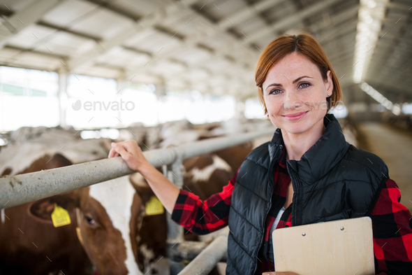 Woman manager with clipboard standing on diary farm, agriculture industry - Stock Photo - Images