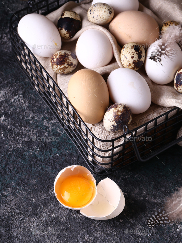 Chicken and Quail Eggs - Stock Photo - Images