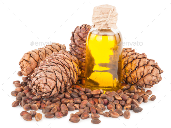 cedar oil and nuts - Stock Photo - Images