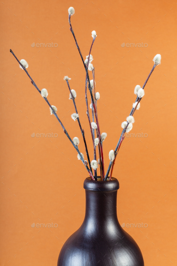 flowering pussy-willow twigs in ceramic bottle - Stock Photo - Images