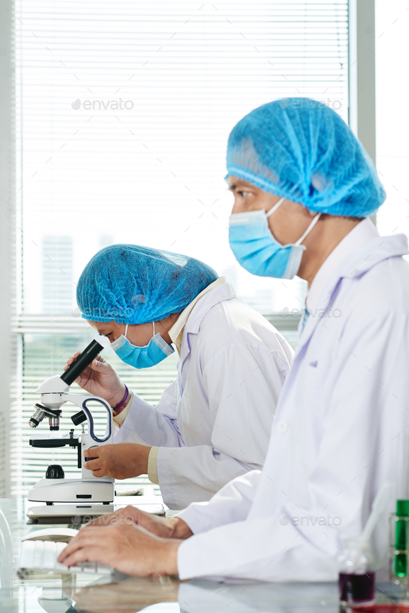 Laboratory technicians working in laboratory - Stock Photo - Images