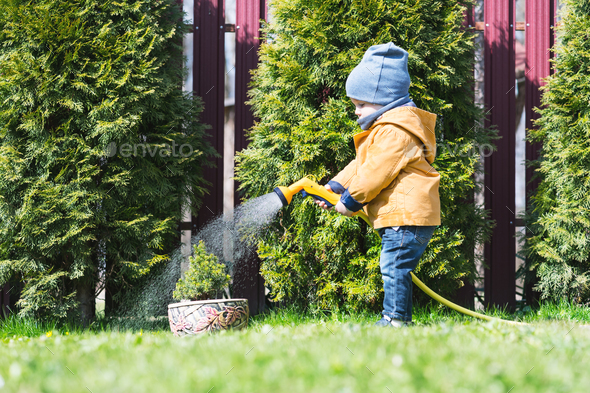 A boy watering soil - Stock Photo - Images