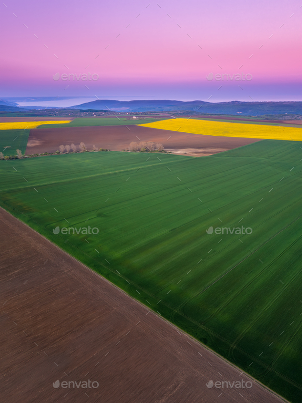 Countryside with green and yellow fields - Stock Photo - Images