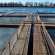 Fish farm for brooding sturgeons in Astrakhan, Russia - PhotoDune Item for Sale