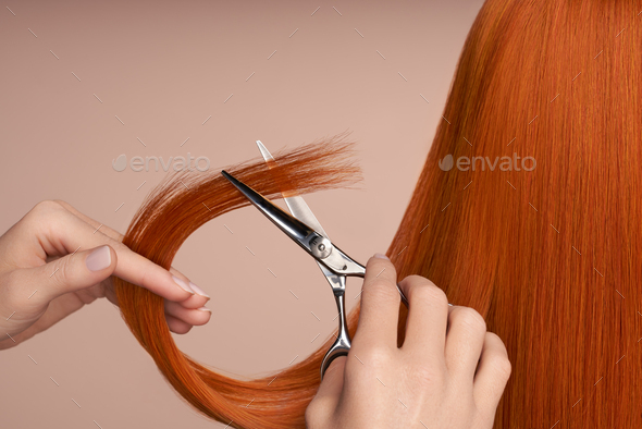Hairdresser cuts long red hair with scissors - Stock Photo - Images