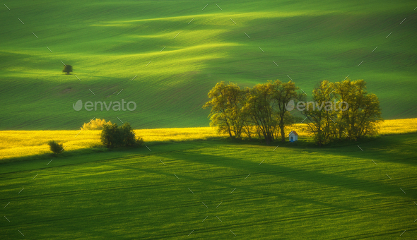 South Moravia landscape and farmland at sunrise - Stock Photo - Images