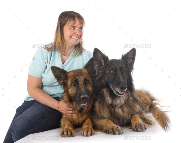 german shepherds and woman - Stock Photo - Images