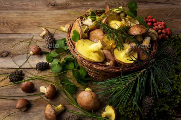 Wicker basket with mushrooms and berries, close up. - Stock Photo - Images