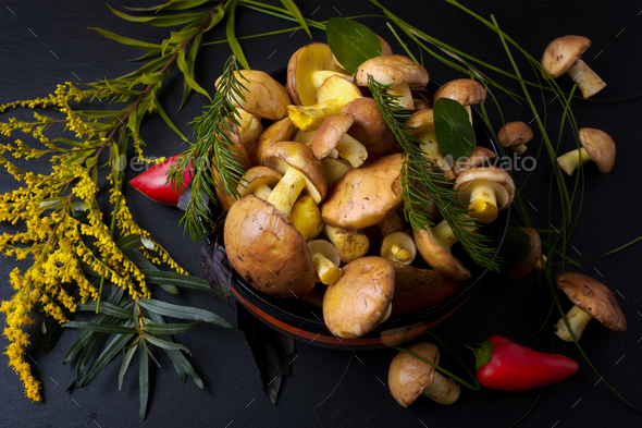 Rustic bowl with forest mushrooms on the black, close up. - Stock Photo - Images