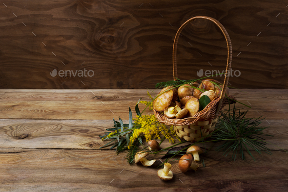 Wicker basket with forest mushrooms on the rustic background. - Stock Photo - Images