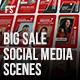 Big Sale Social Media Scenes - VideoHive Item for Sale