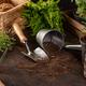 Gardening tools and utensils - PhotoDune Item for Sale