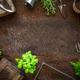 Spring in the hobby garden - PhotoDune Item for Sale