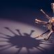 Fear of Coronavirus COVID-19 concept. Corona virus pandemic - PhotoDune Item for Sale