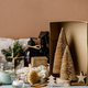 Zero waste Christmas decorations - PhotoDune Item for Sale