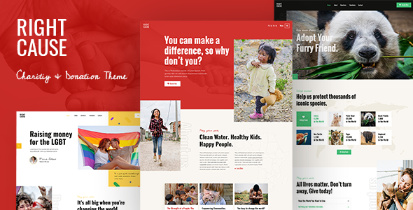 RightCause - Charity and Donation Theme