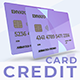 Plastic Credit Card - VideoHive Item for Sale