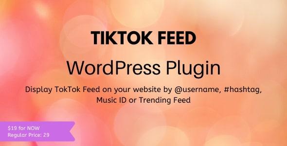 Download TikTok Feed – WordPress Plugin Free Nulled