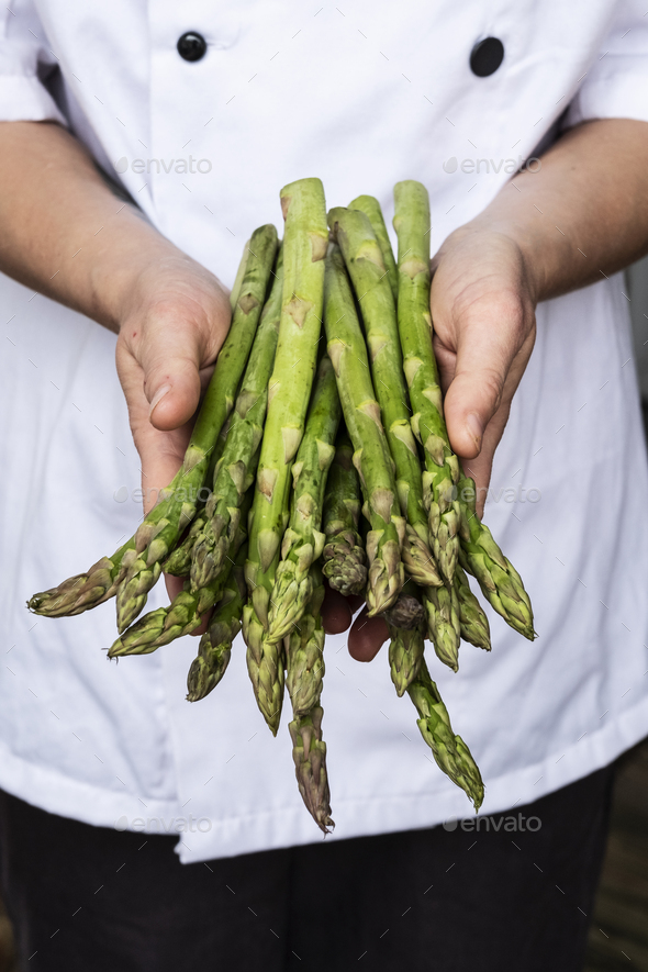 Close up of chef holding a bunch of green asparagus. - Stock Photo - Images