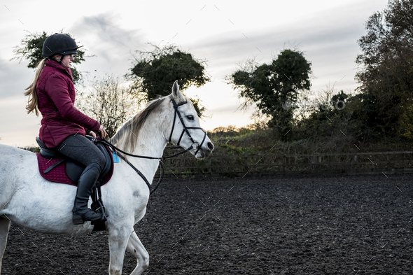Young woman riding on white Cob horse in paddock. - Stock Photo - Images