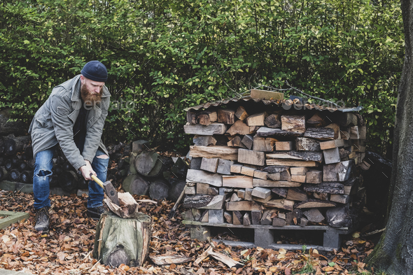Bearded man wearing black beanie and parka standing in garden in autumn, using axe to chop piece of - Stock Photo - Images