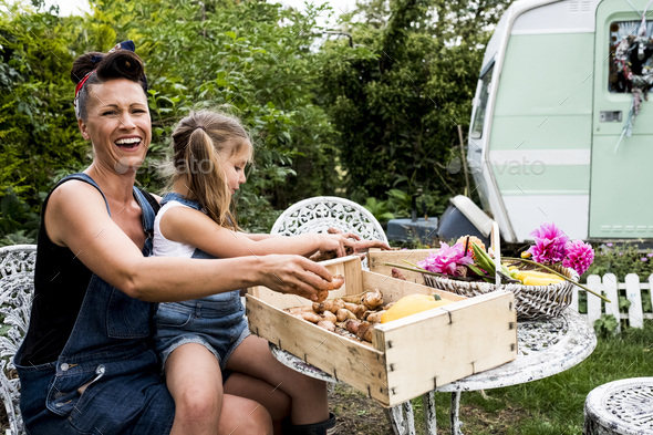 Laughing woman and girl sitting at table in a garden, wooden crate with vegetables and basket with - Stock Photo - Images