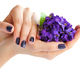 Hands of a woman with dark manicure on nails and bouquet of violets on a white background - PhotoDune Item for Sale