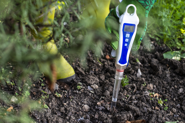 PH meter tester in soil. Measure soil with digital device. - Stock Photo - Images
